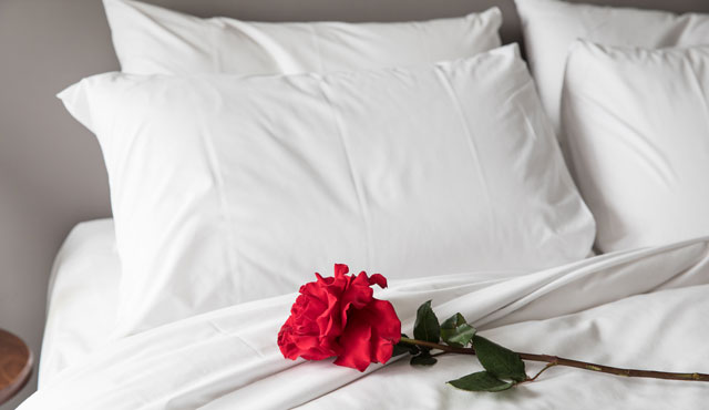 Valentines Sydney Potts Point Boutique Hotel Couple Romance Romantic Roses Special