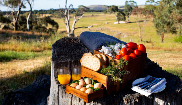 bush breakfast macedon ranges spring hill estate