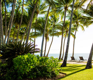Complimentary flexible Cancellation hotel luxury alamanda palm cove